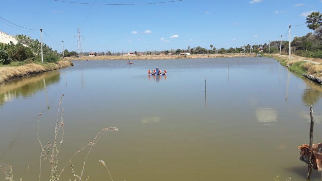 Fazenda de Camarão Funcionando